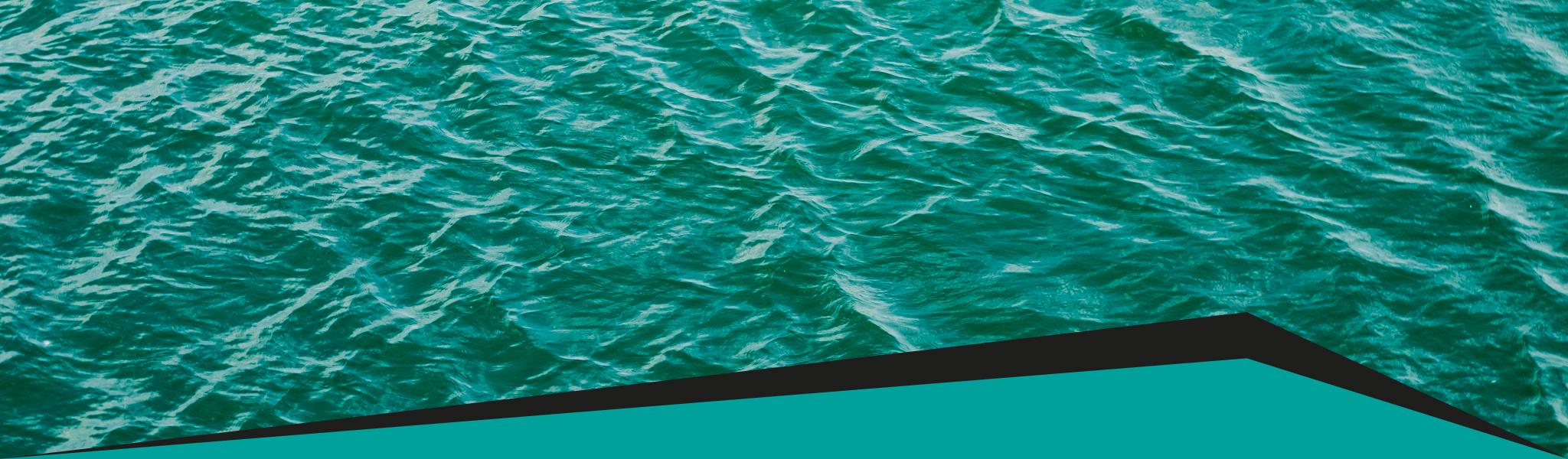 linea acqua carboni attivi